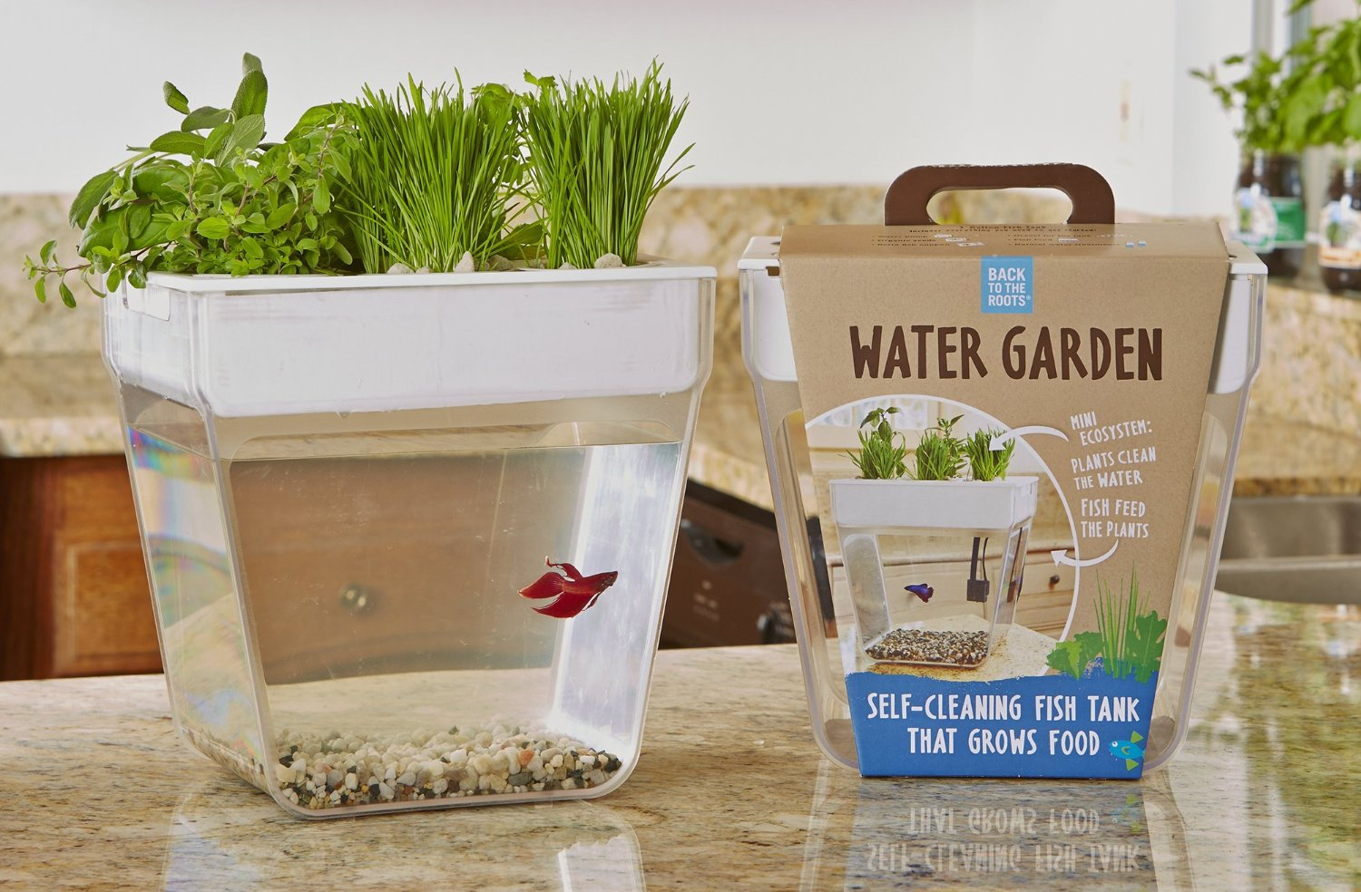 fish tank & herb garden in one - kitchen gadget box